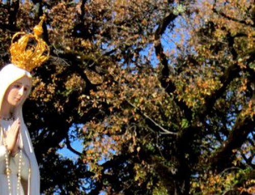 Notre-Dame de Fatima : tous les messages pour fêter les 100 ans